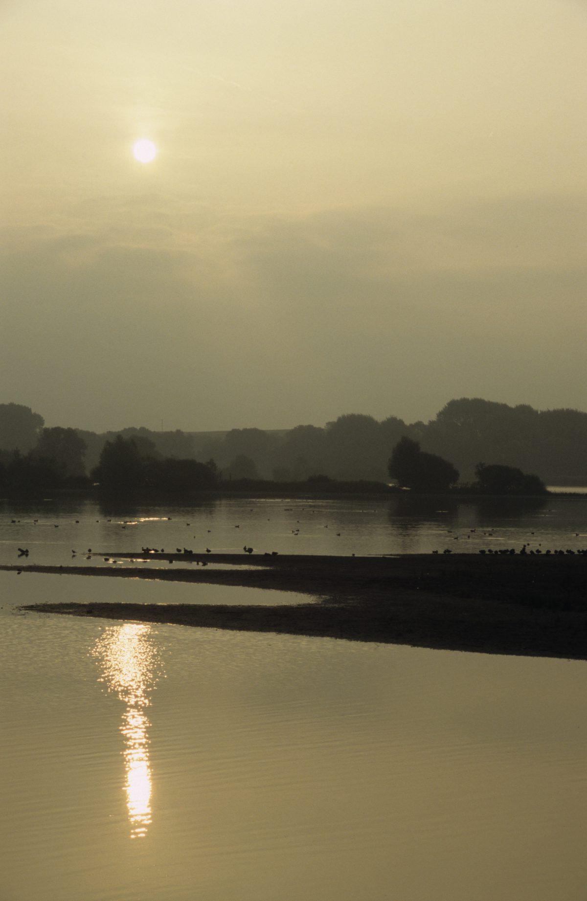 sun, water, sunrise