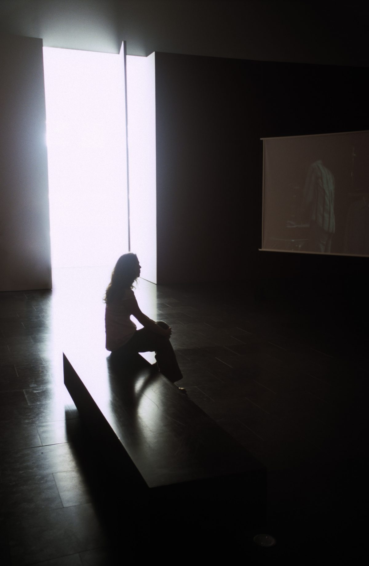 Viewing - Museum of Contemporary Art, female, contrast, view