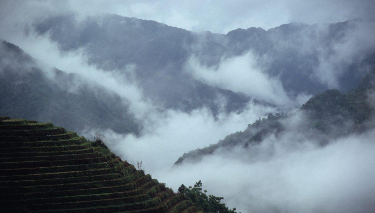 7am, mountain, view, fog