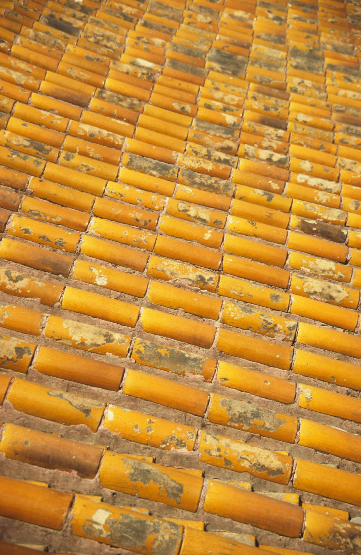 roof, pattern, many