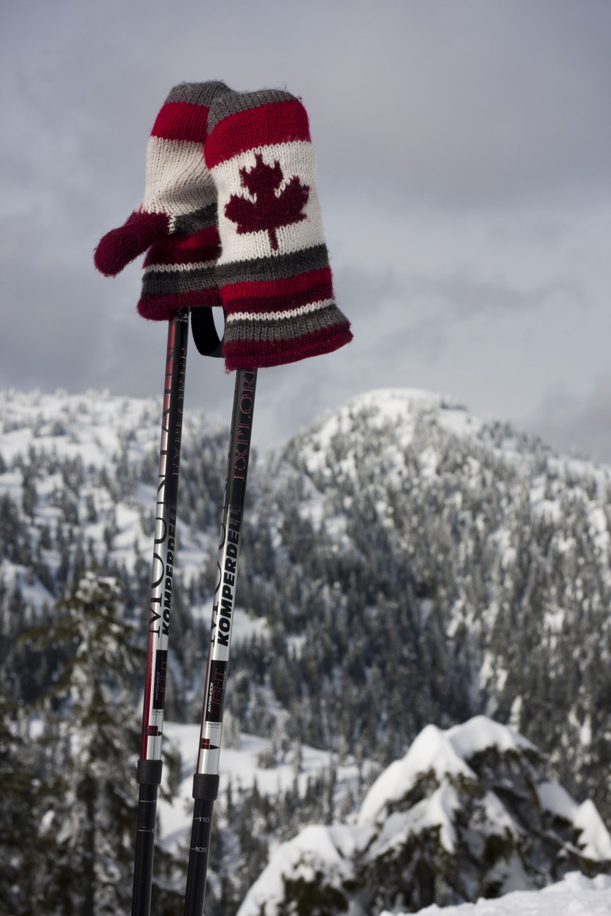 Red gloves - Snowshoeing at Cypress mountain, snow