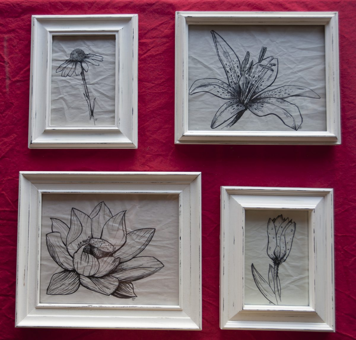 4 Flowers - Pen on paper. 13x18cm & 20x29cm framed, ch3, pen, paper