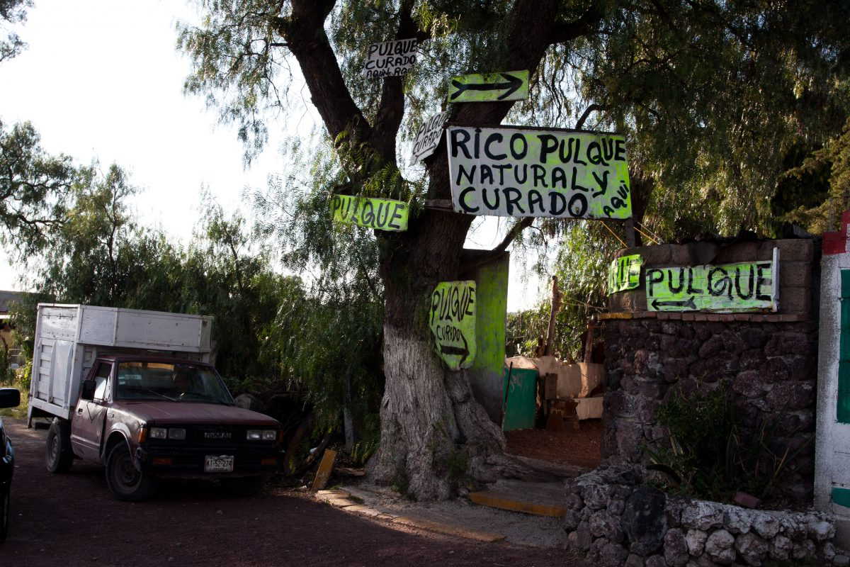 Pulque bar