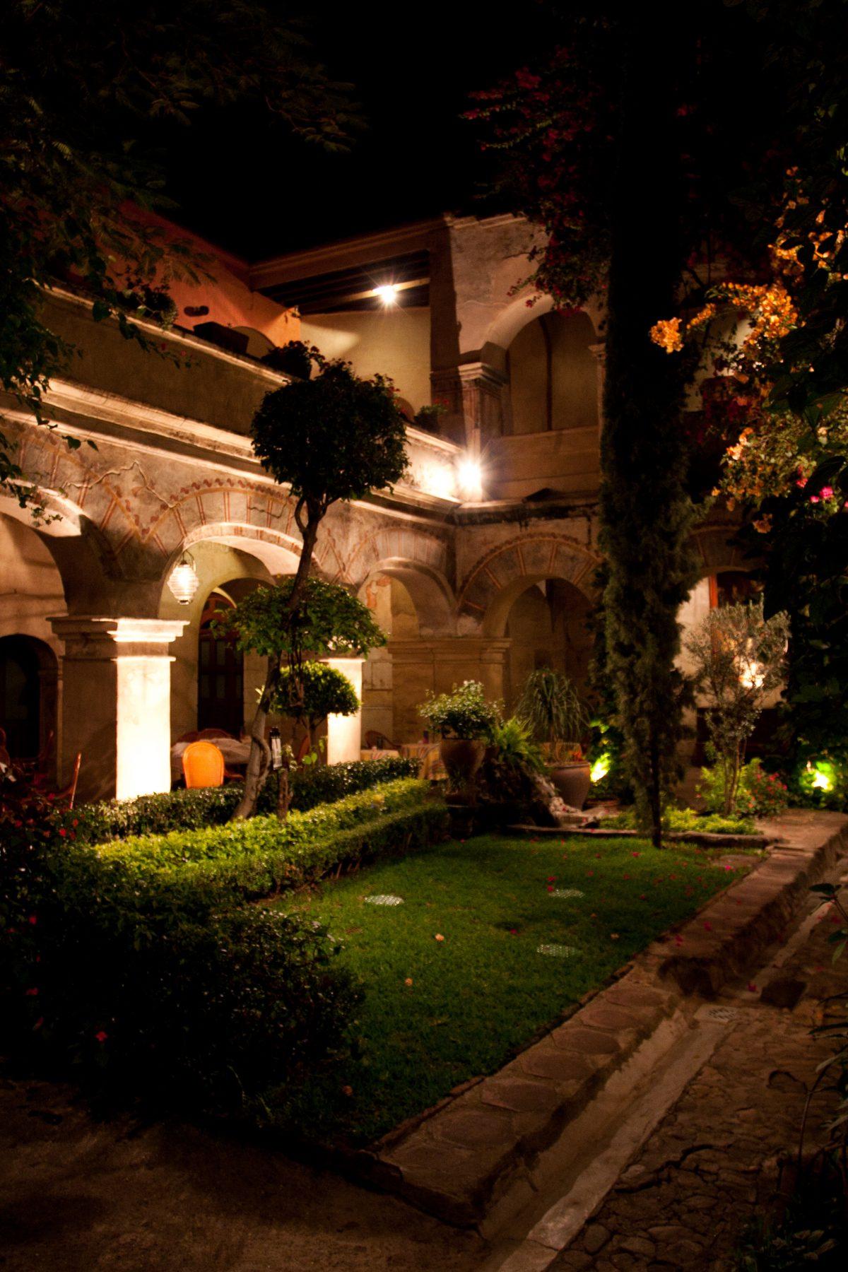 garden, night