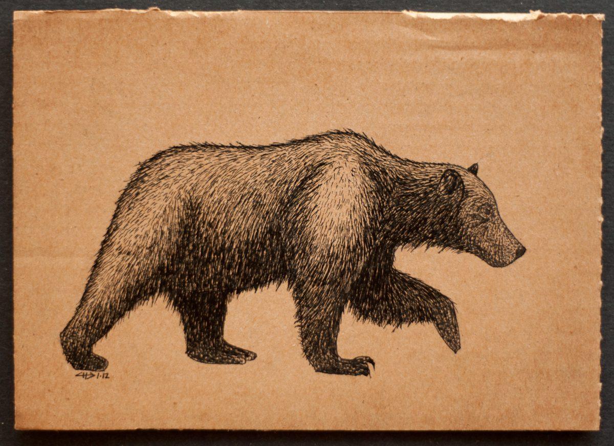 Grizzly bear - 18x13cm, ink on cardboard, cardboard, ink, ch3