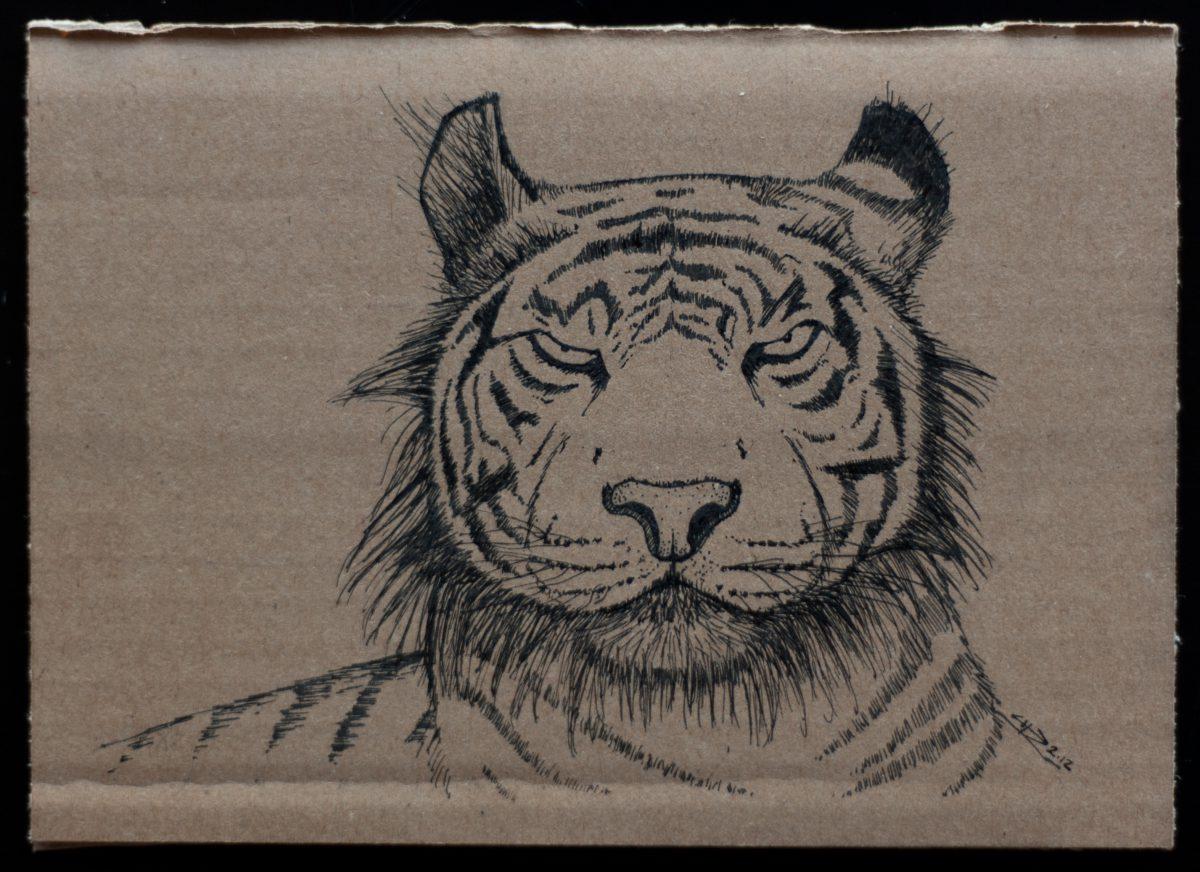 Tiger - 18x13cm, ink on cardboard, ch3, cardboard, ink
