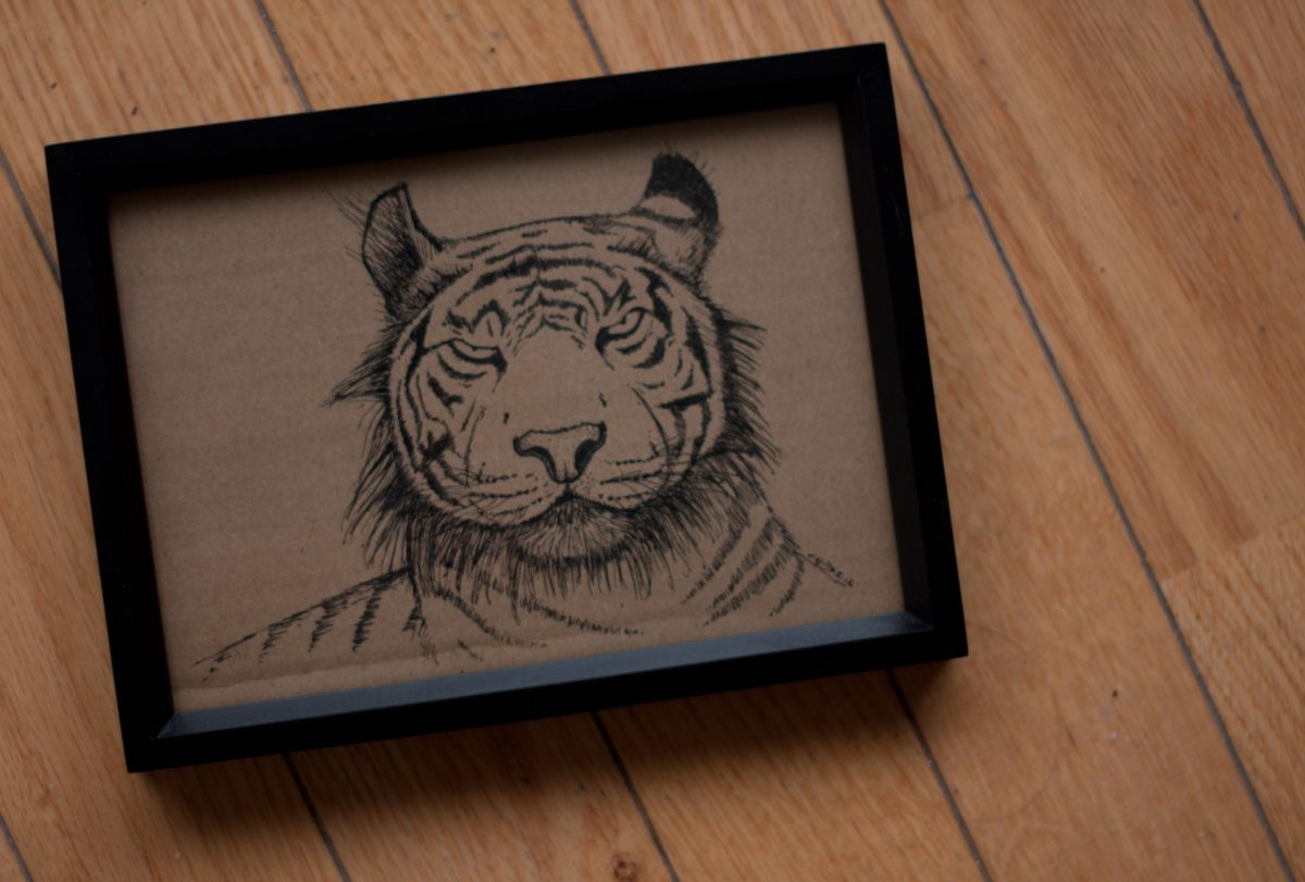 Tiger - 18x13cm, ink on cardboard, framed, ch3, cardboard, ink