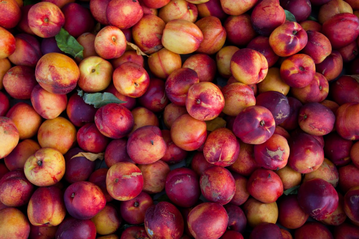 Nectarines, fruit, pattern, many, color