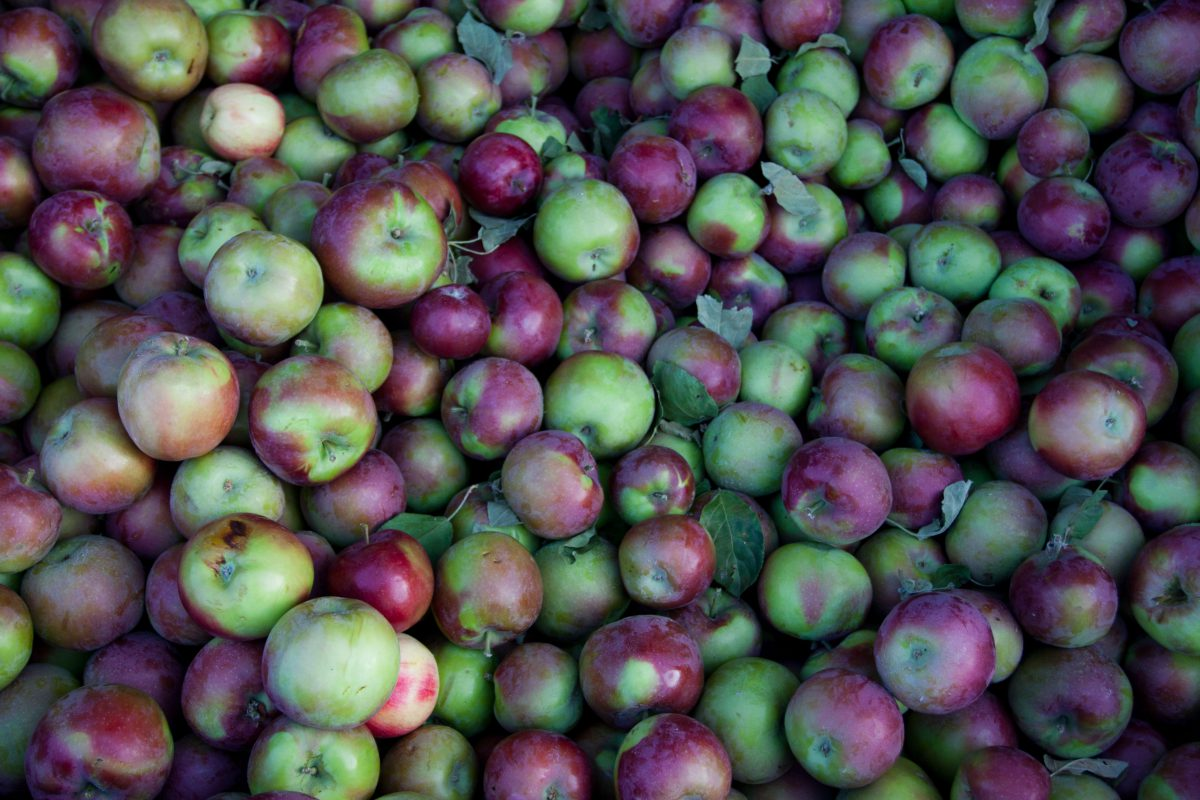 Apples, fruit, pattern, many, color