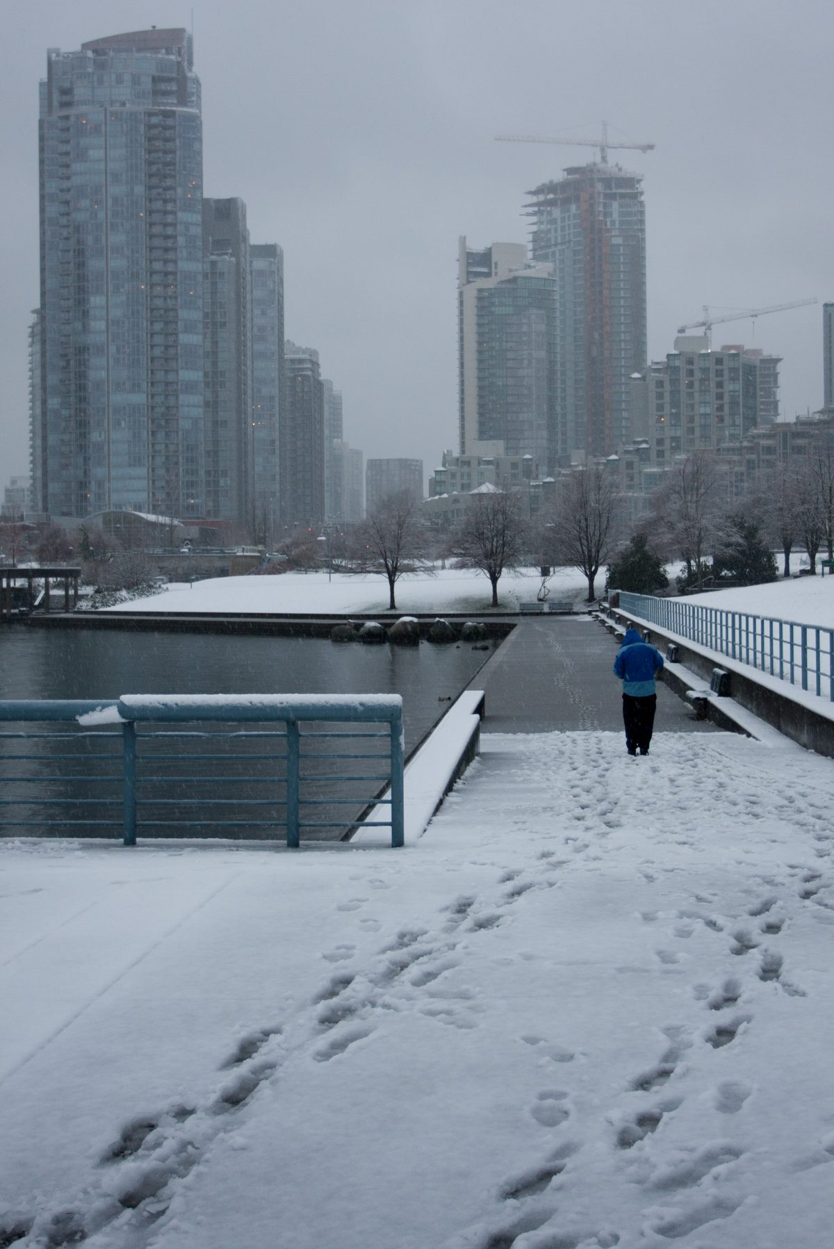 sea, snow, city