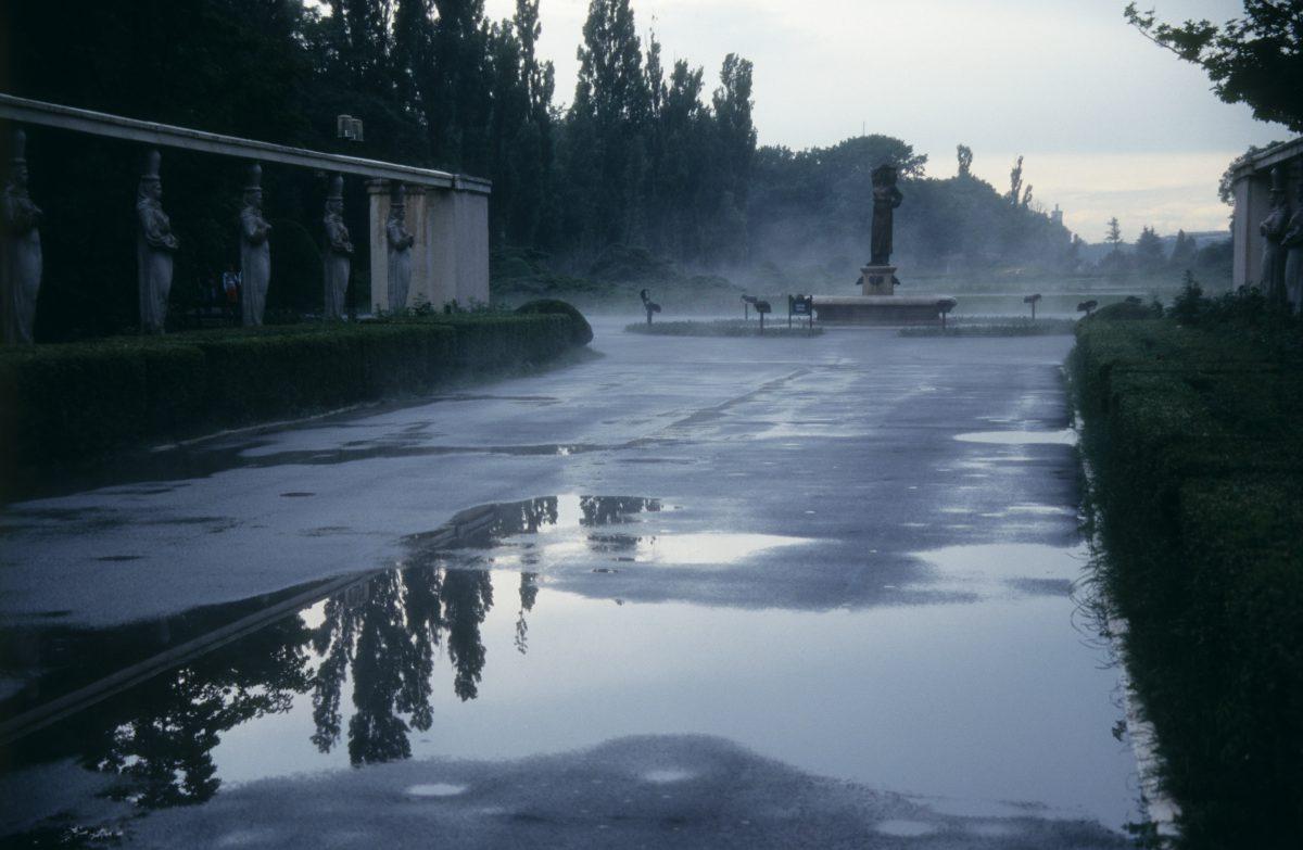 reflection, fog