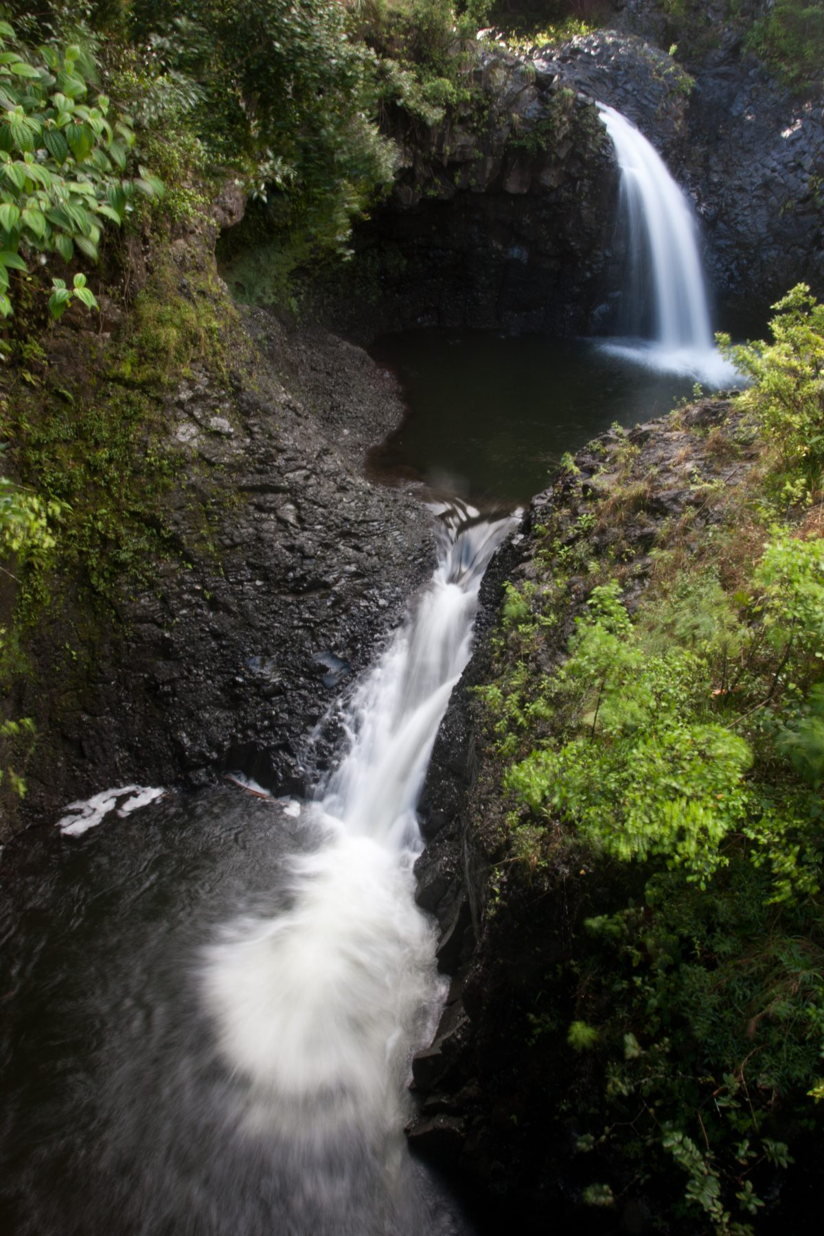 Kipahulu, forest, tree, river, waterfall