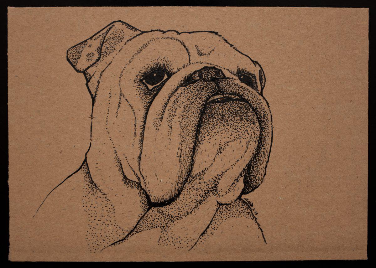 Lola - 18x13cm, ink on cardboard, cardboard, ink, dog, ch3