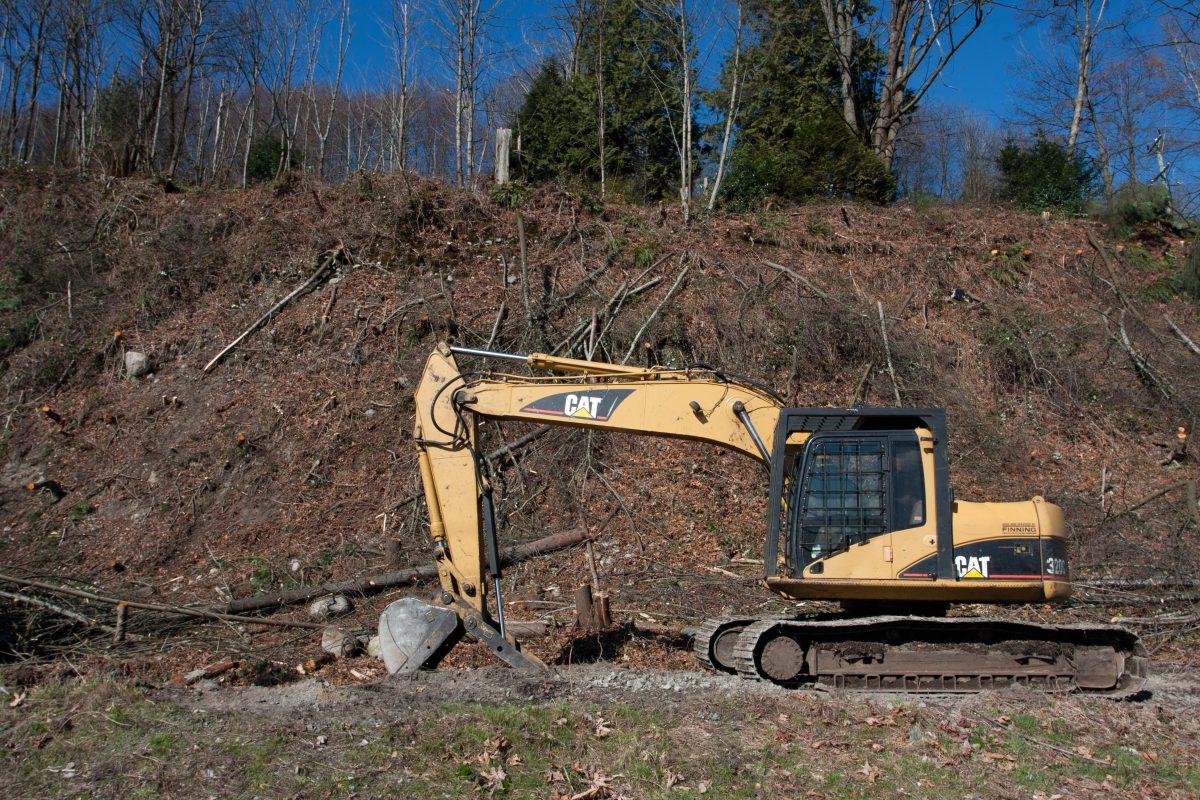 vehicle, forest, bulldozer