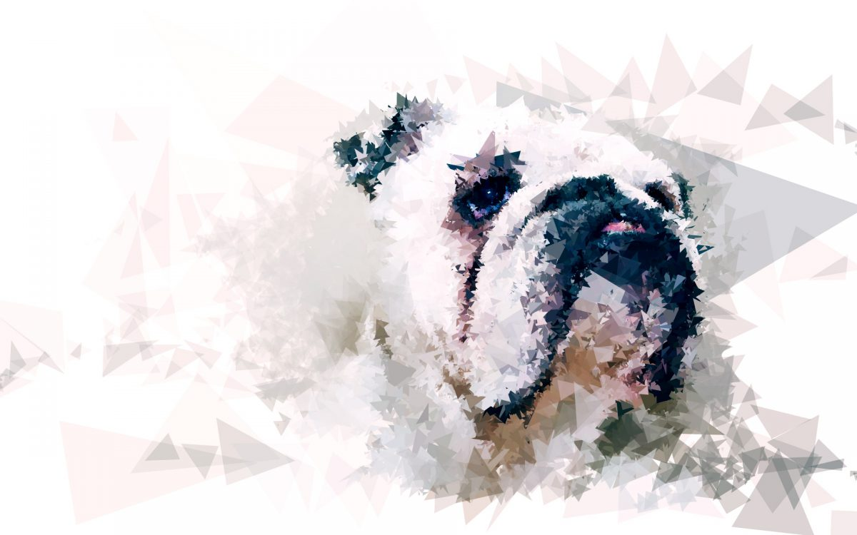 Lola - Digitally created images based on photograph using custom made brushes in Processing., ch3, digital, portrait, processing