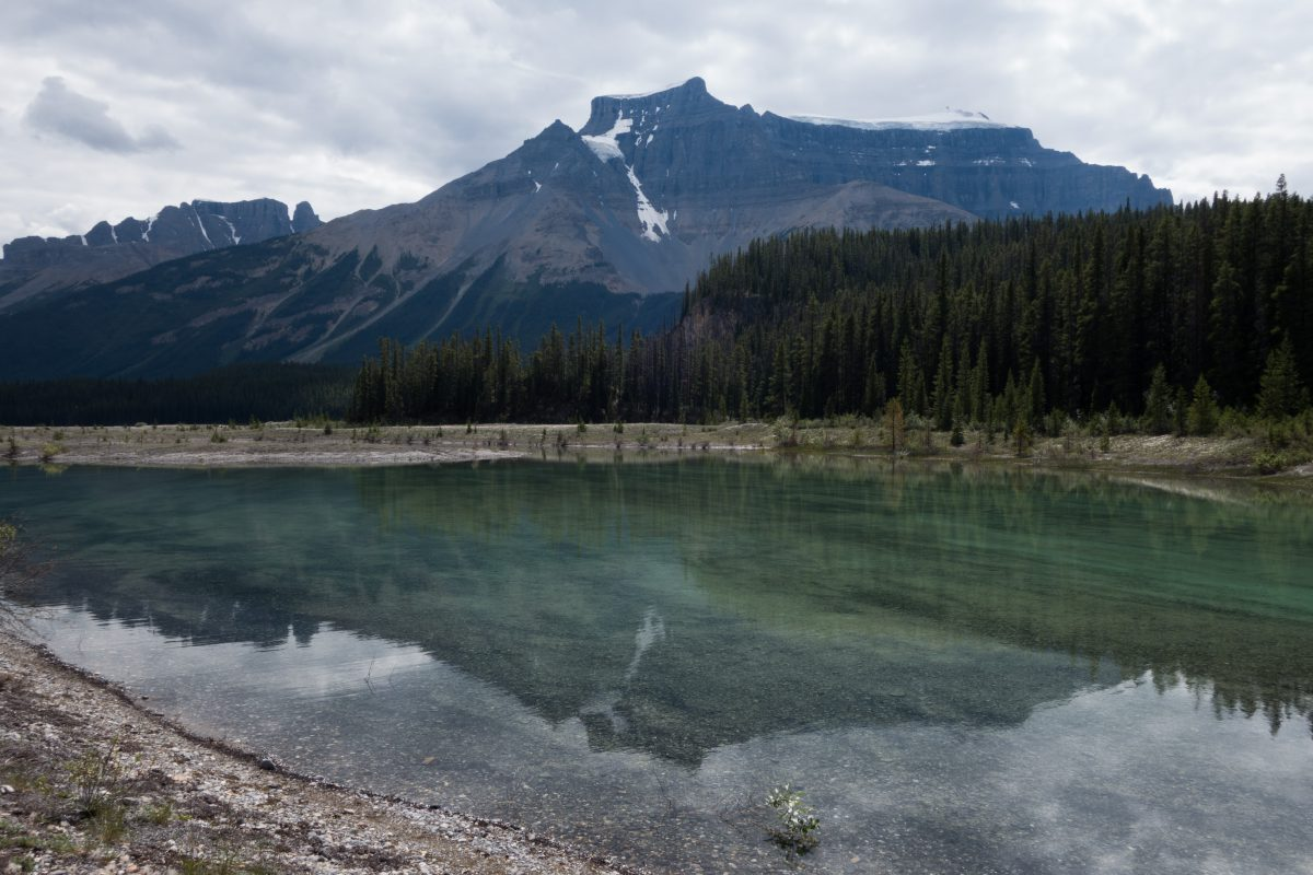 Icefields Parkway, lake, forest, mountain, glasier, reflection