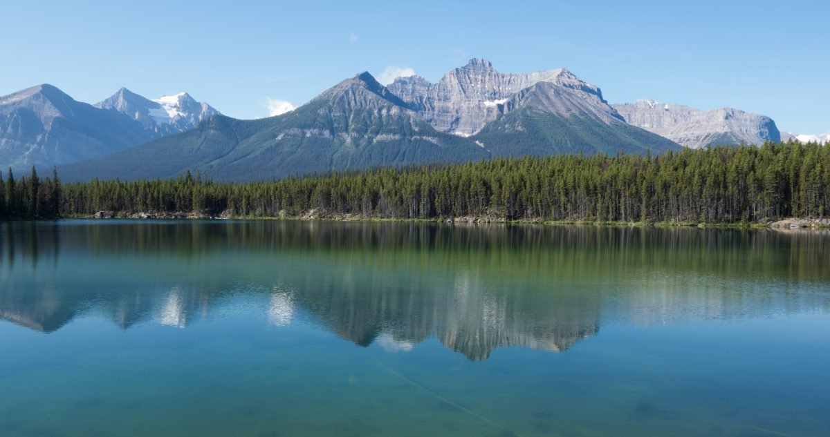 Icefields Parkway, lake, forest, mountain, reflection, view