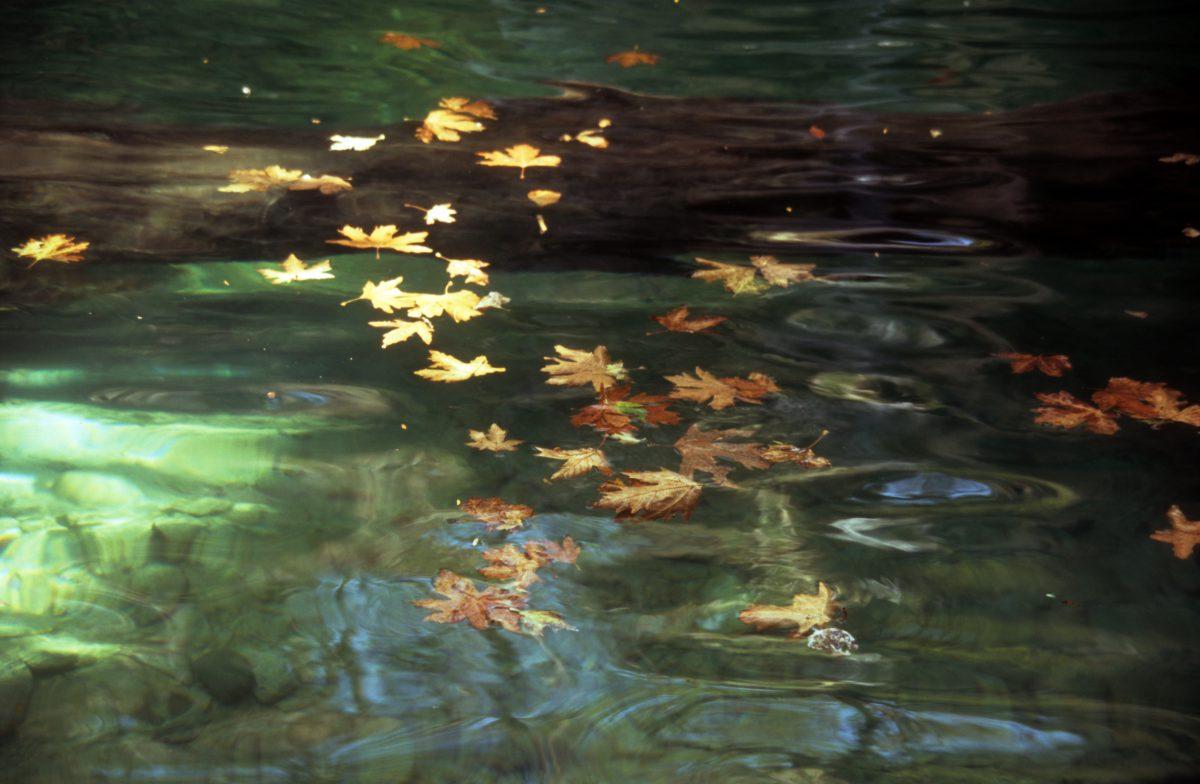 Mylopotamos, water