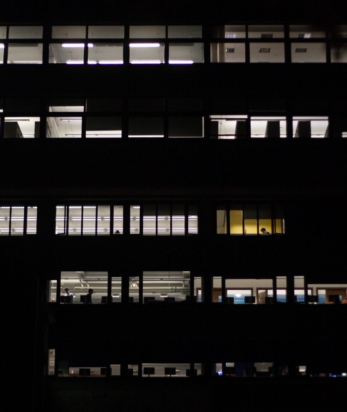 building, night, office