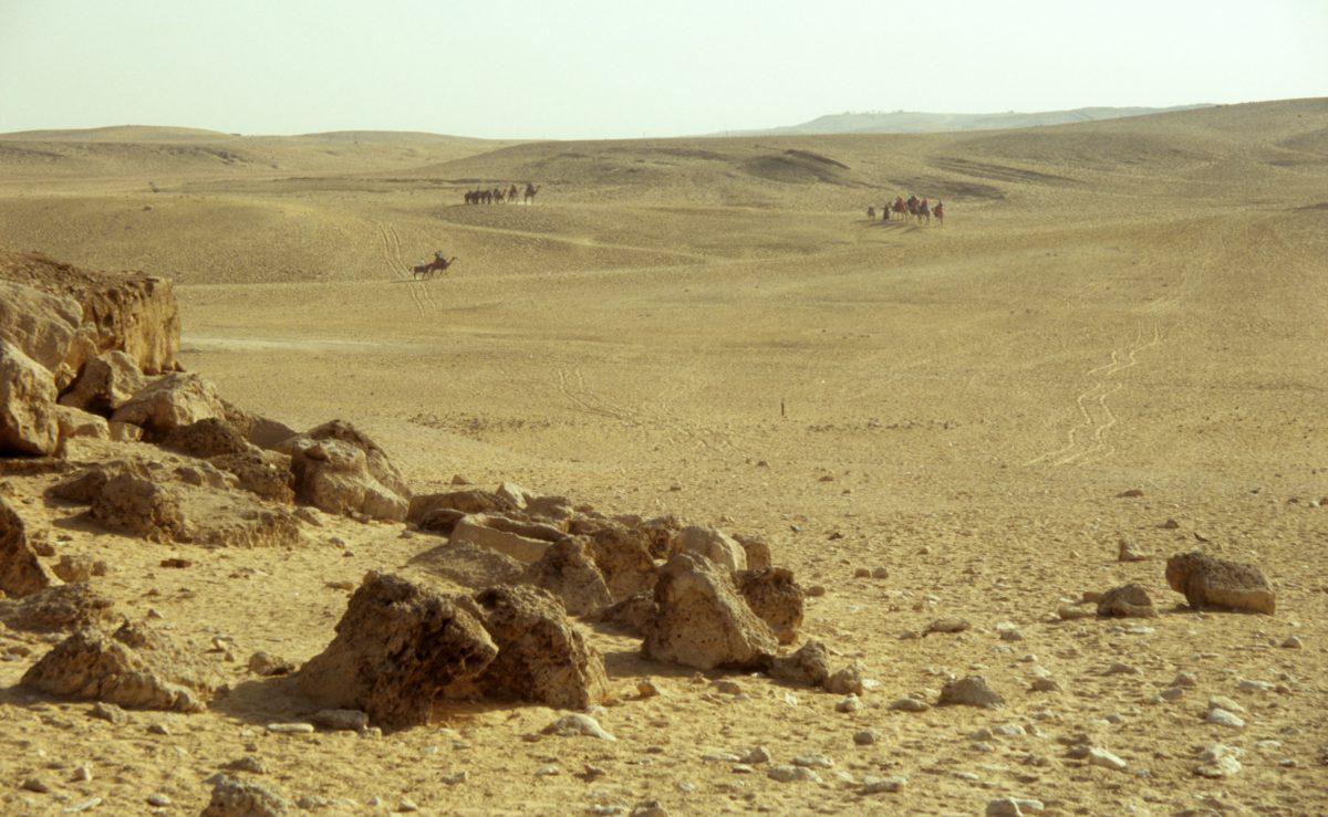 desert, sand