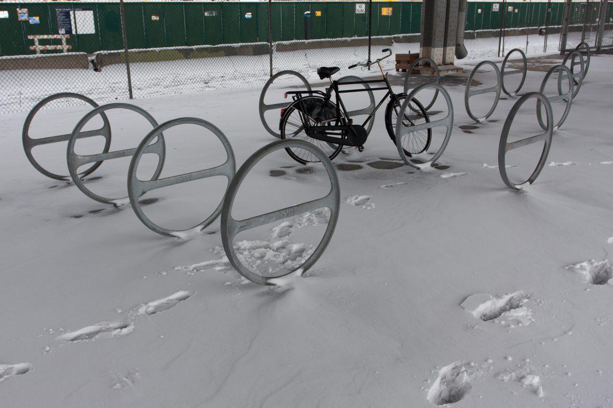 Juno Storm, snow, bike