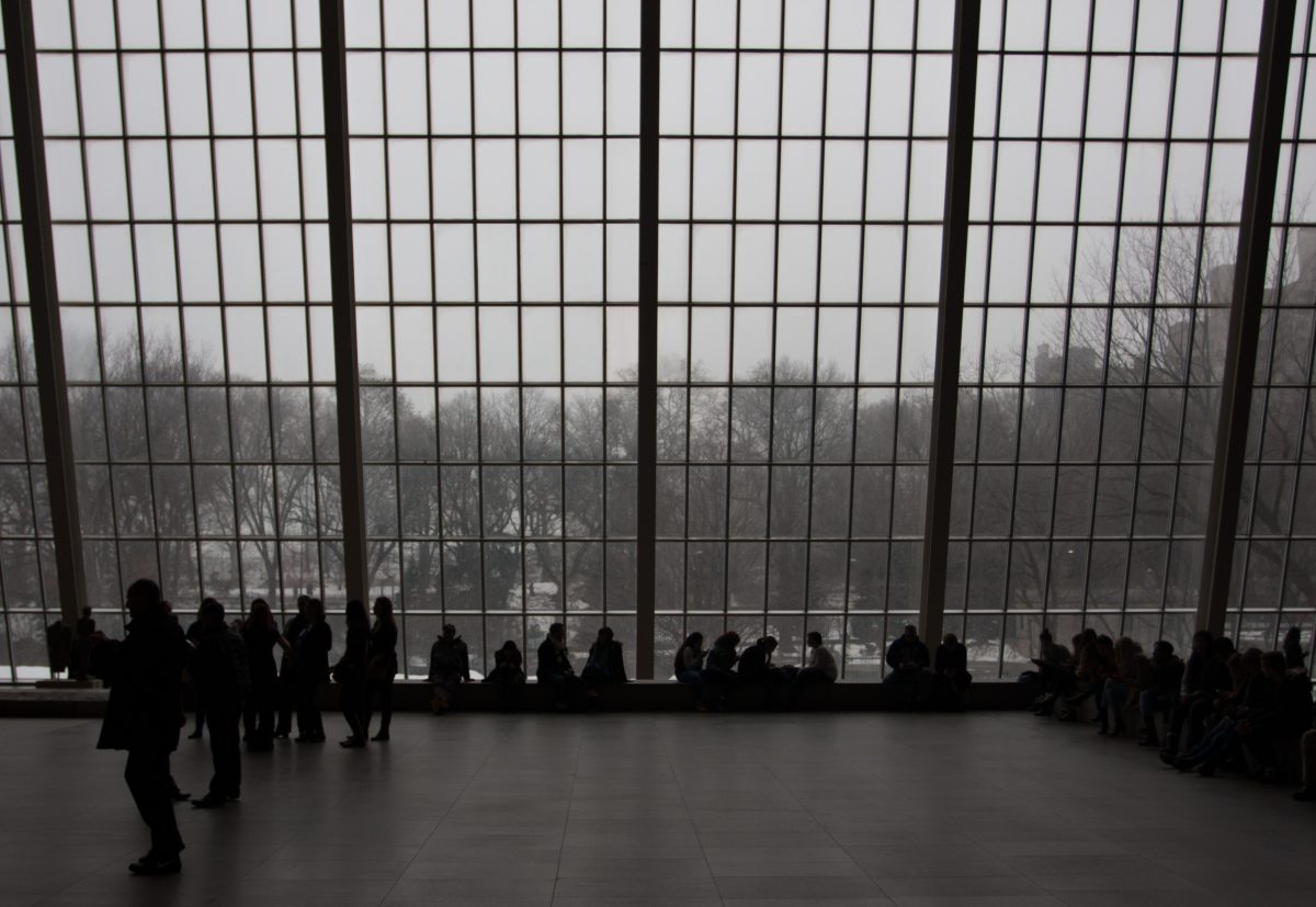 MET, window, view, snow, museum