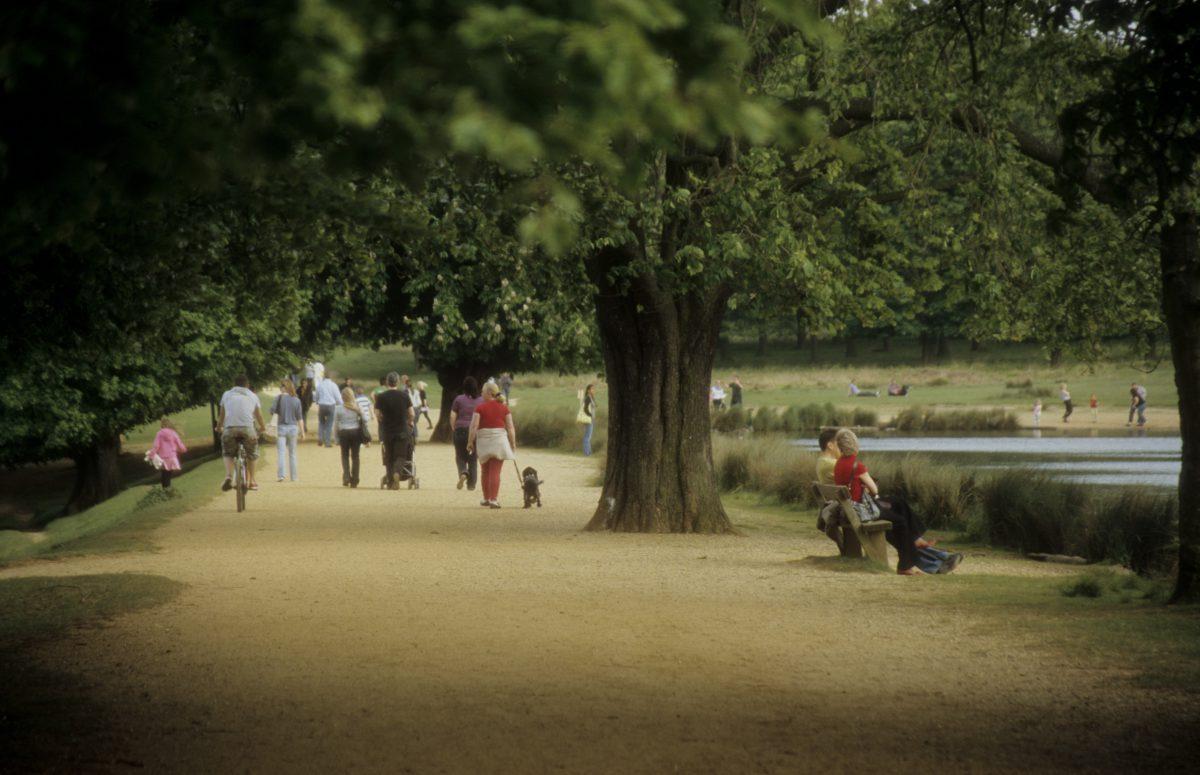Richmond park, people
