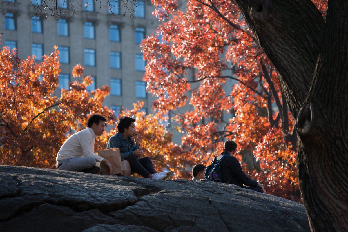 Central Park, city, park