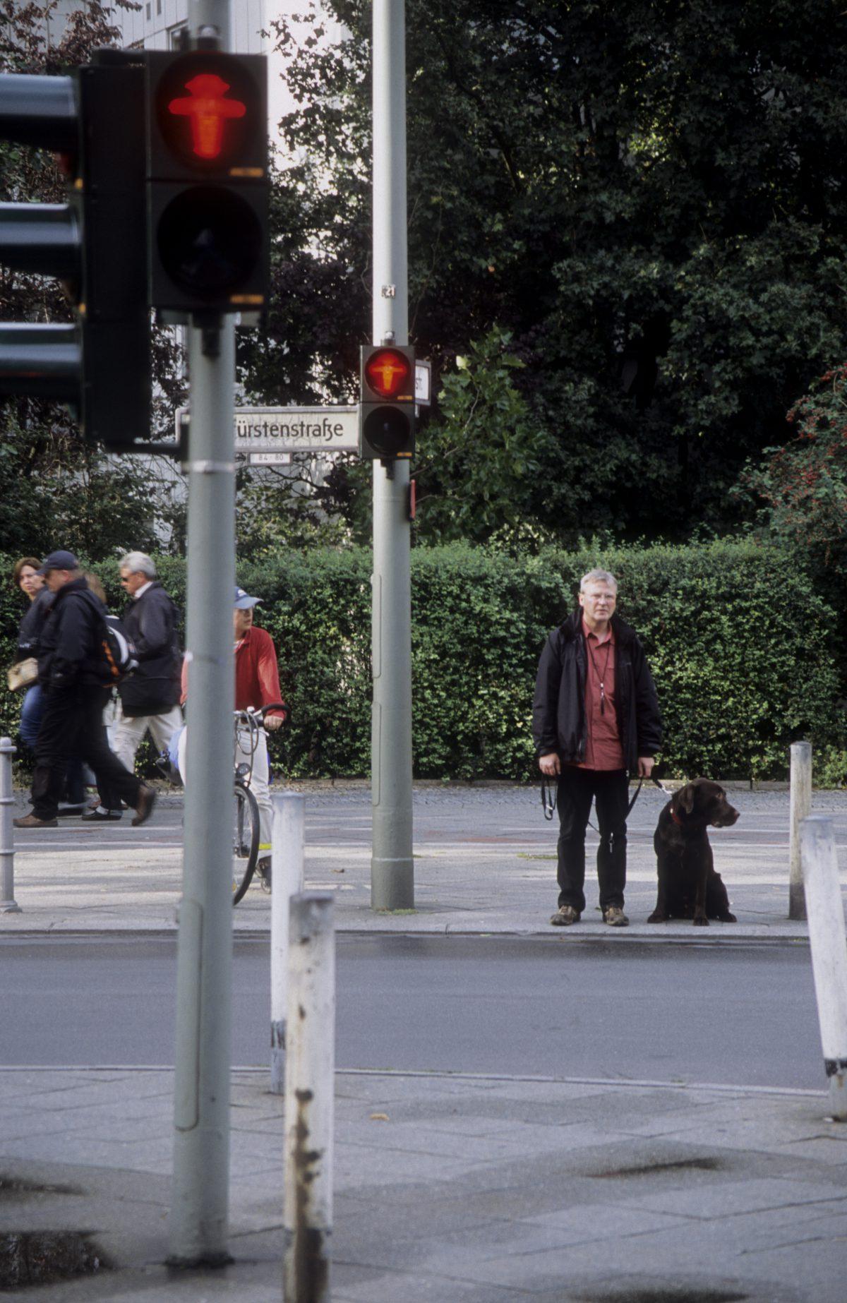 Ampelmännchen, male, animal, street