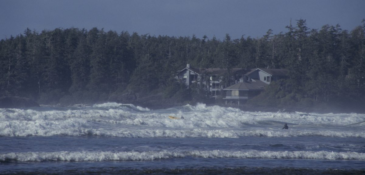 Waves, forest, beach, sea