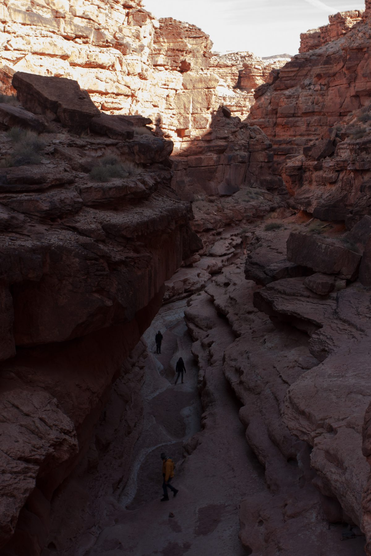 Marble Canyon - Cathedral's Wash, canyon, rock
