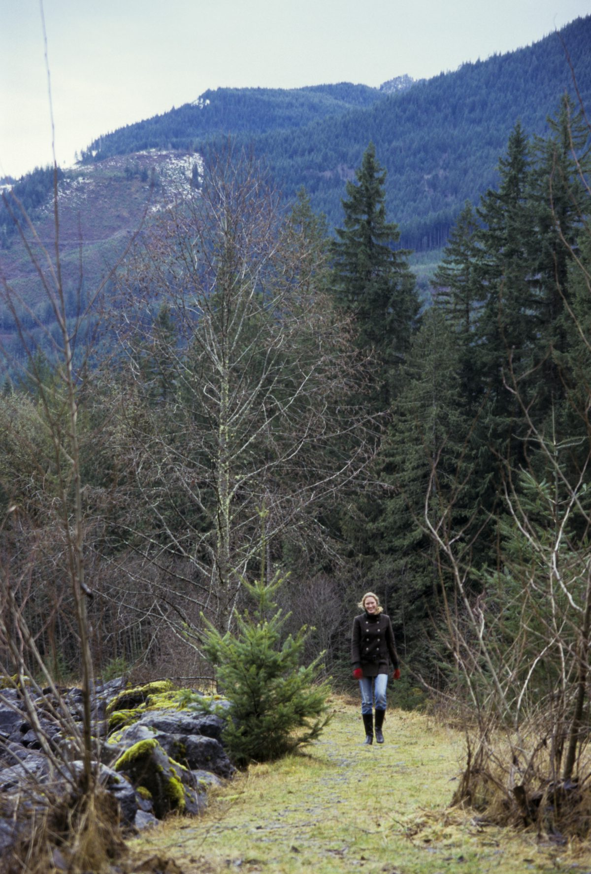 female, mountain, forest, tree