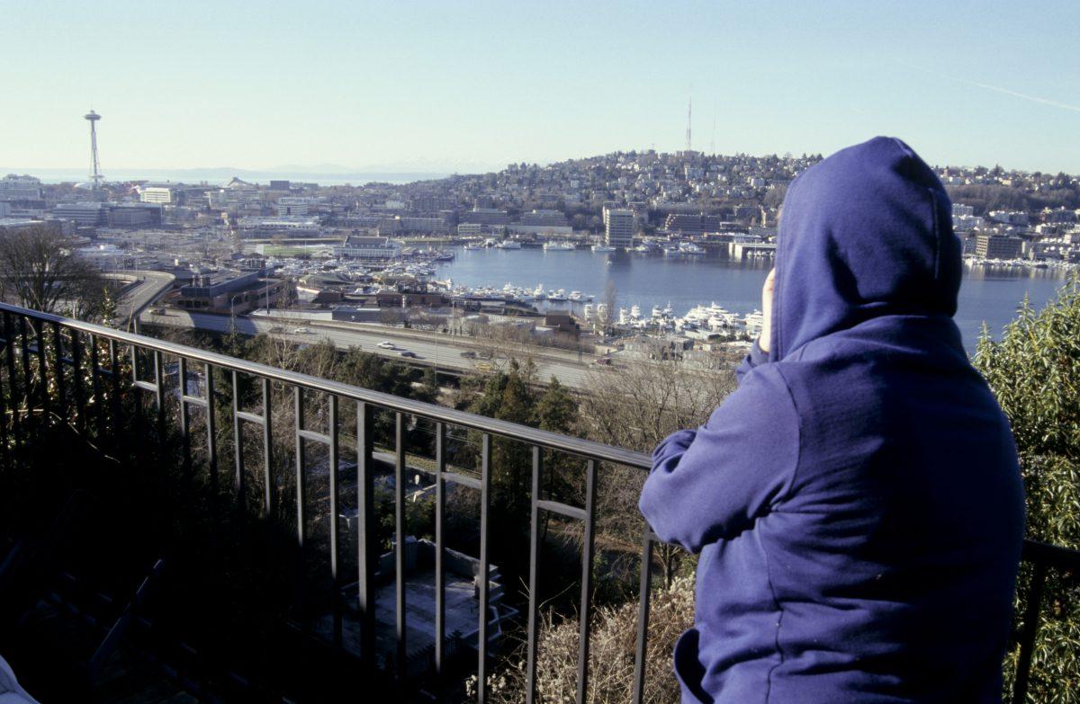 Seattle, bridge, view, port