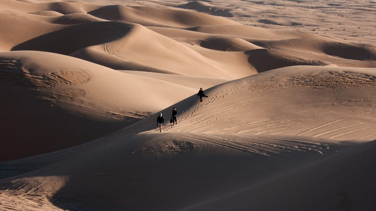Algodones Dunes, view