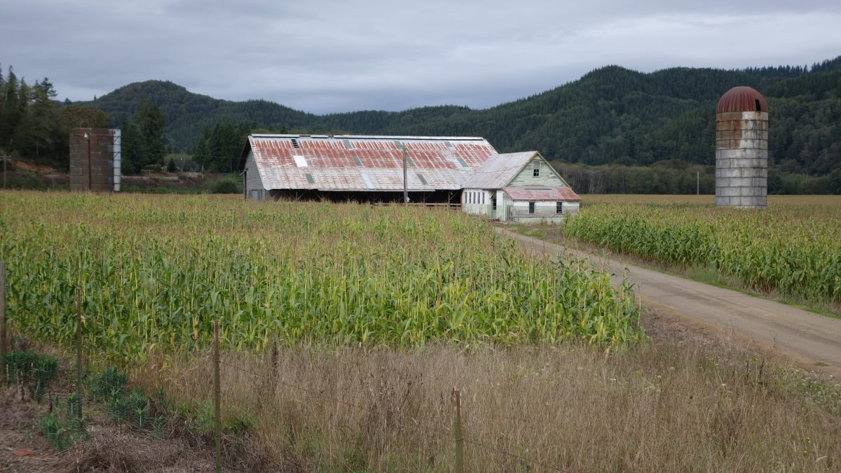 Cycling tour - Vancouver to LA, cornfield, mountain, cloud, barn, field